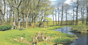 Indvielsen af Lynes nye stisystem samt det nye Raunkjær-Knude Skolespor